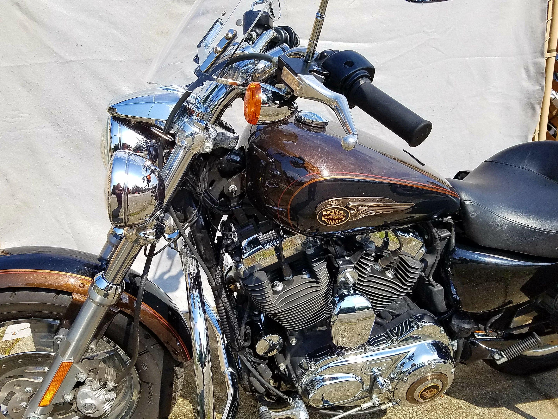 Harley Davidson: 2013 Harley Davidson XL1200C Sportster Custom